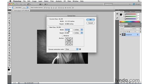 Making the canvas bigger by a specific amount with Relative Canvas Size: Photoshop CS5 Essential Training