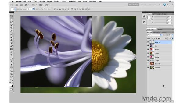 Naming, hiding, creating, and deleting layers: Photoshop CS5 Essential Training