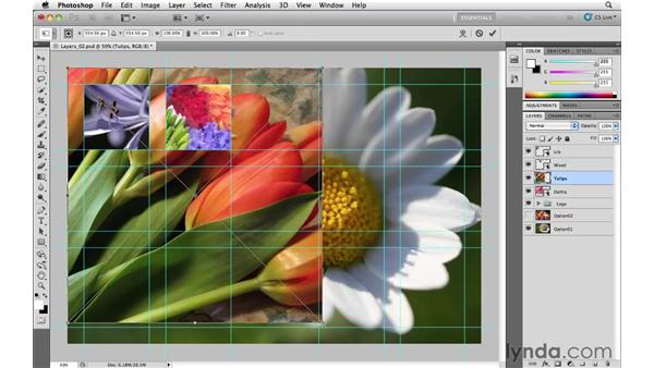 Transforming layers: Photoshop CS5 Essential Training