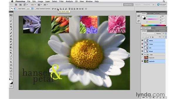 Aligning and distributing layers: Photoshop CS5 Essential Training