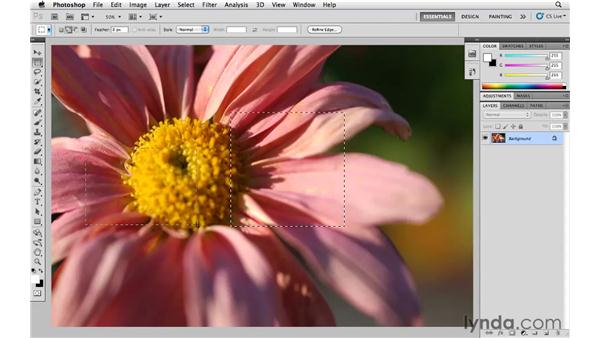 Using the Marquee and Lasso tools: Photoshop CS5 Essential Training