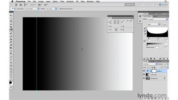 Improving tonal quality with Levels: Photoshop CS5 Essential Training