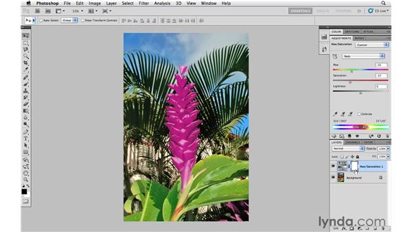 Shifting colors with Hue/Saturation: Photoshop CS5 Essential Training