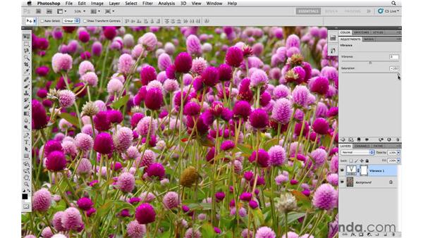 Making washed out colors pop with Vibrance: Photoshop CS5 Essential Training
