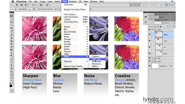 Overview of filters: Photoshop CS5 Essential Training