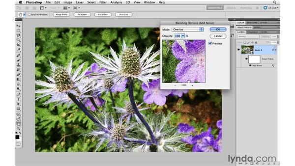 Applying filters nondestructively with Smart Filters: Photoshop CS5 Essential Training