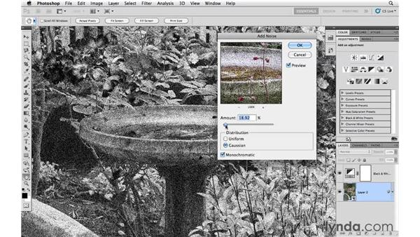 Adding noise to an image with the Add Noise filter: Photoshop CS5 Essential Training