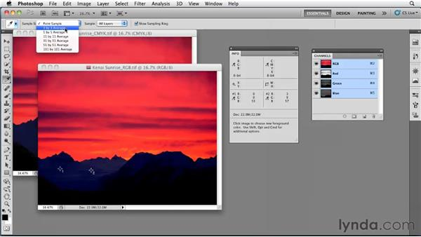 Setting up and using the Info panel: Photoshop CS5: Prepress and Printing