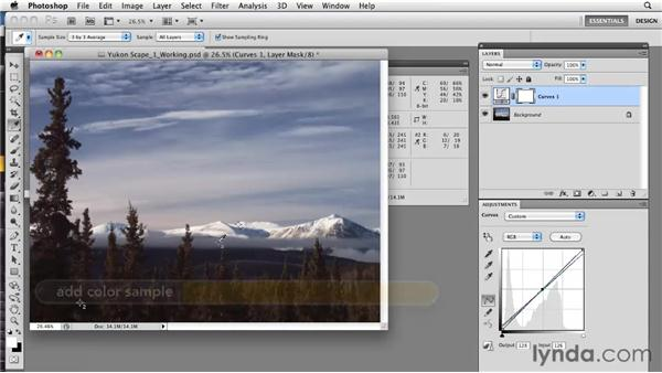 Adjusting brightness and contrast: Photoshop CS5: Prepress and Printing