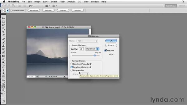 Working with JPGs: Photoshop CS5: Prepress and Printing