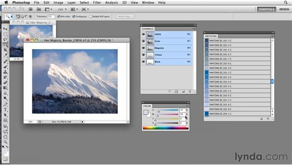 Assigning and building process colors: Photoshop CS5: Prepress and Printing
