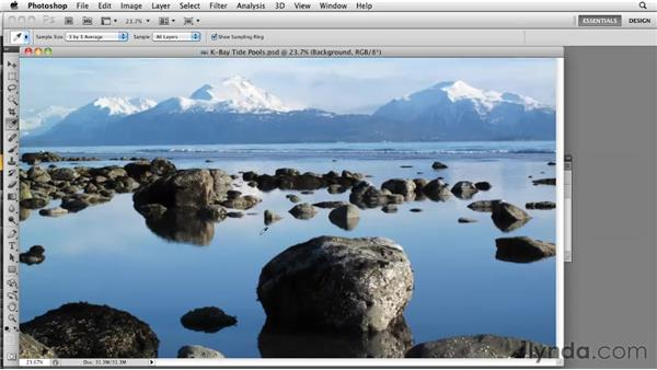 Knowing a sharpening tool: Photoshop CS5: Prepress and Printing