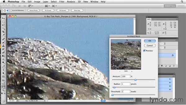 Sharpening RGB files: Photoshop CS5: Prepress and Printing