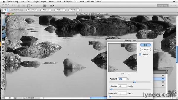 Sharpening in Lab: Photoshop CS5: Prepress and Printing