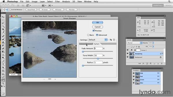 Using Smart Filters: Photoshop CS5: Prepress and Printing