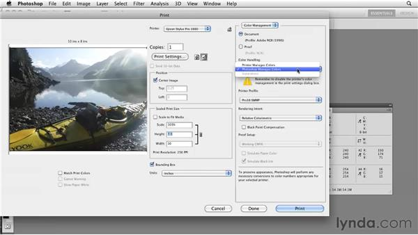 Printing to high-quality inkjets: Photoshop CS5: Prepress and Printing