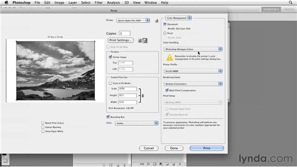 Printing to single-channel grayscale: Photoshop CS5: Prepress and Printing