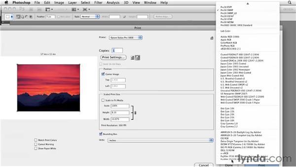 Printing a hard proof: Photoshop CS5: Prepress and Printing