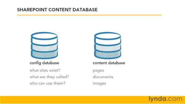 Understanding the SharePoint content database: SharePoint Designer 2007: Branding SharePoint Sites