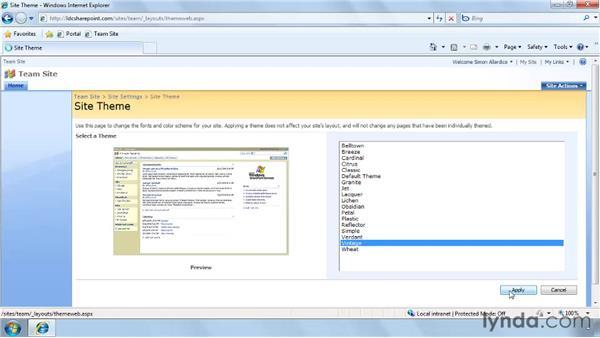 Using themes in SharePoint: SharePoint Designer 2007: Branding SharePoint Sites