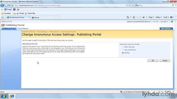 Understanding security concerns for internet-facing sites: SharePoint Designer 2007: Branding SharePoint Sites