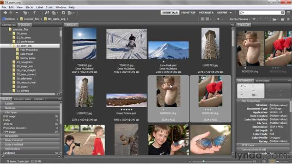 Moving, copying, and deleting files: Photoshop CS5 One-on-One: Fundamentals