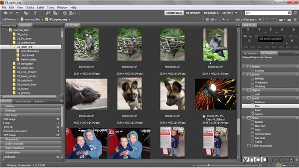 Creating and assigning keywords: Photoshop CS5 One-on-One: Fundamentals