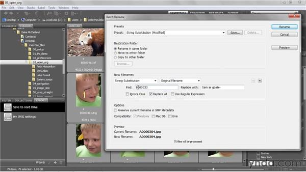 String substitution and regular expressions: Photoshop CS5 One-on-One: Fundamentals