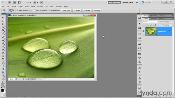 Hidden old-school zoom tricks: Photoshop CS5 One-on-One: Fundamentals