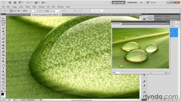 "The Navigator and ""bird's-eye"" scrolling: Photoshop CS5 One-on-One: Fundamentals"