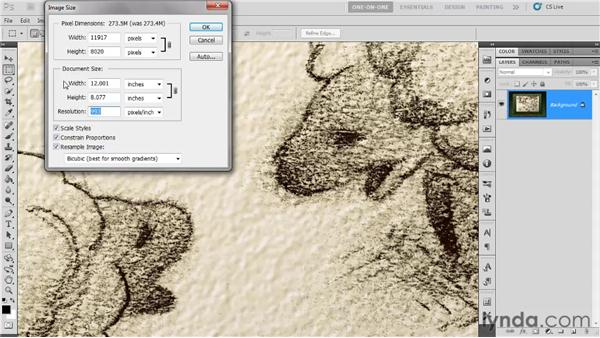 Downsampling for print: Photoshop CS5 One-on-One: Fundamentals