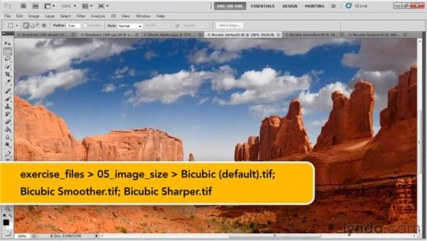 Downsampling for email: Photoshop CS5 One-on-One: Fundamentals