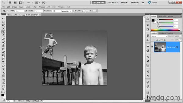 Crop tool presets: Photoshop CS5 One-on-One: Fundamentals
