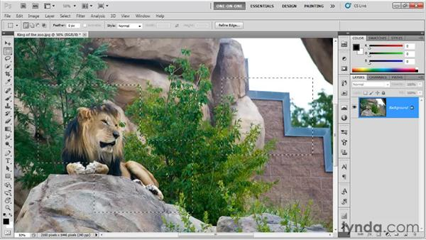 The Crop command: Photoshop CS5 One-on-One: Fundamentals