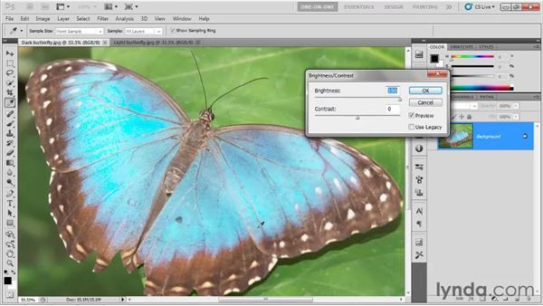 Brightness and contrast: Photoshop CS5 One-on-One: Fundamentals