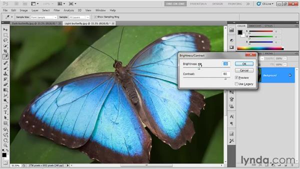 Adjusting numerical values: Photoshop CS5 One-on-One: Fundamentals