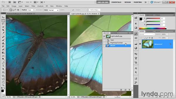 Introducing adjustment layers: Photoshop CS5 One-on-One: Fundamentals
