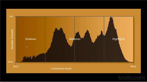 Introducing the Histogram: Photoshop CS5 One-on-One: Fundamentals