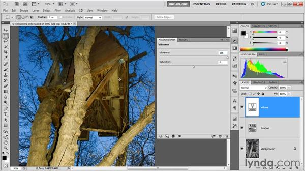 Refining saturation with Vibrance: Photoshop CS5 One-on-One: Fundamentals