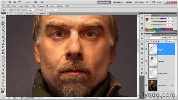 Smoothing away whiskers: Photoshop CS5 One-on-One: Fundamentals