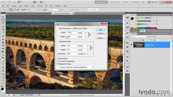 Incremental downsampling: Photoshop CS5 One-on-One: Fundamentals