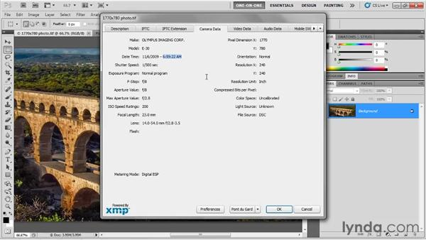 Assigning copyright and metadata: Photoshop CS5 One-on-One: Fundamentals