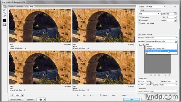 Saving metadata: Photoshop CS5 One-on-One: Fundamentals