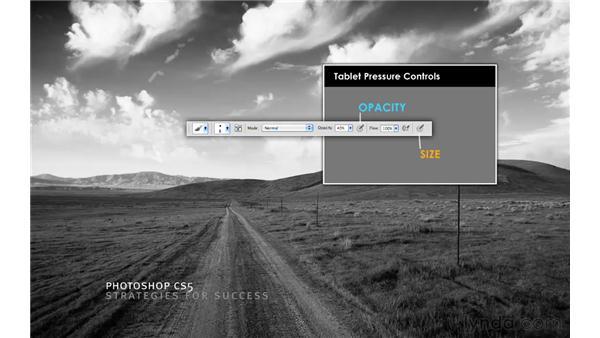 Taking visual snapshots: Photoshop CS5 for Photographers