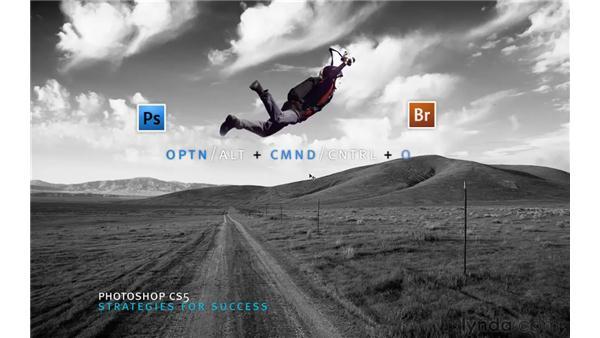 Creative memorization: Photoshop CS5 for Photographers