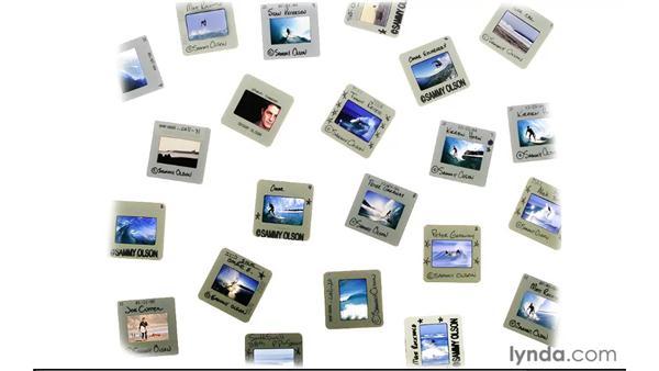 What is Adobe Bridge?: Photoshop CS5 for Photographers