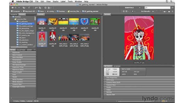 Introducing the Bridge workspace: Photoshop CS5 for Photographers