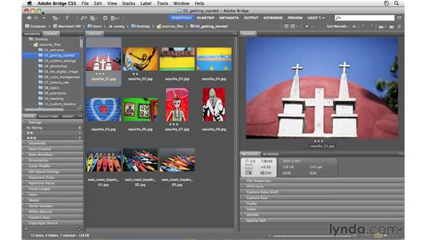 Working with Bridge and Photoshop: Photoshop CS5 for Photographers