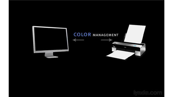 Introducing color management: Photoshop CS5 for Photographers