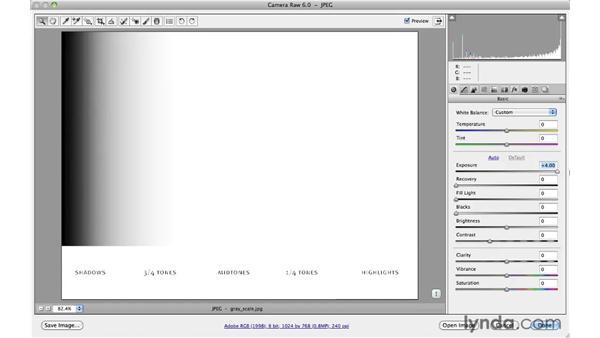 Using the basic Camera Raw controls: Photoshop CS5 for Photographers